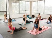 The Vinyasa Yoga Activity